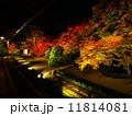 南禅寺・天授庵の紅葉ライトアップ 11814081