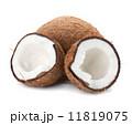 Coconut 11819075