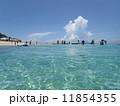 観光地 南国 海の写真 11854355