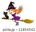 ハロウィン 空飛ぶ魔女と黒猫 白バック 11854542