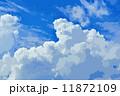 夏の雲 11872109