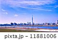 スカイツリーと荒川 11881006