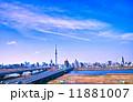 荒川 墨田区 スカイツリーの写真 11881007