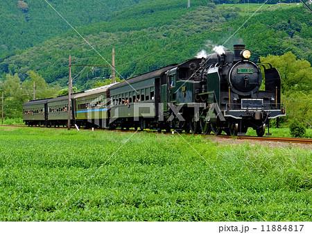 大井川鉄道 SL 11884817