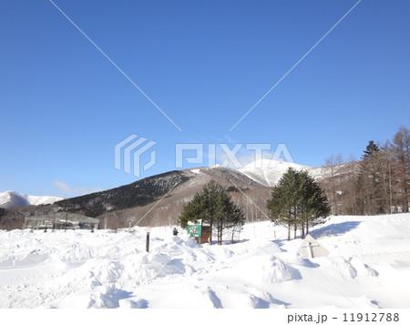 真冬の北海道 11912788