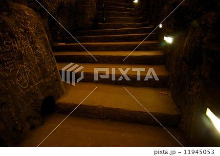 バトゥ洞窟 11945053