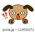 びっくり顔犬 11950371