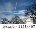 冬の寒空 11954497