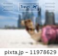 航空会社 エアライン 航空機のイラスト 11978629