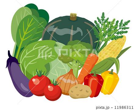 緑黄色野菜【食材・シリーズ】 11986311