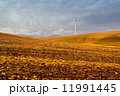 Windmills and beautiful landscape. Spain at winter 11991445