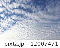 空 青空 秋の空の写真 12007471