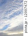 空 青空 秋の空の写真 12007472