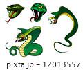 爬虫類 彫り物 ヘビのイラスト 12013557