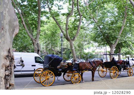 観光馬車 セビリア 【スペイン】の写真素材 [12028290] - PIXTA