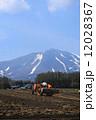 春の浅間山を背景に農作業 12028367