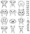 犬 / 線画 12039222