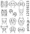 犬 / 線画 12039223