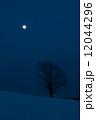 満月と雪原の丘に立つ木 12044296