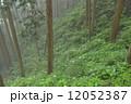 御岳山 山 霧の写真 12052387