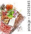絵画 水彩画 デジタルのイラスト 12052845
