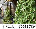 家屋 住宅 家の写真 12055789
