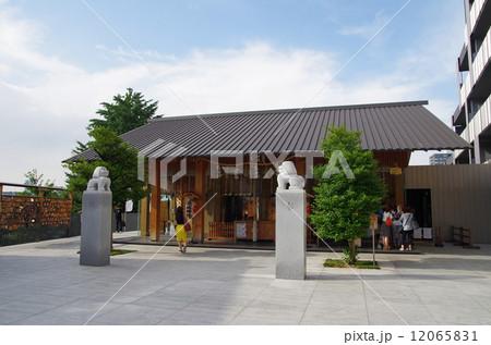 赤城神社(神楽坂) 12065831