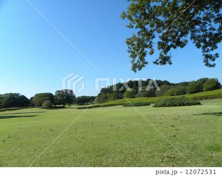 昭和の森太陽の広場の初秋の景色 12072531