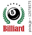 Billiards and snooker emblem 12078575