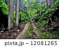 林道 道 道路の写真 12081265