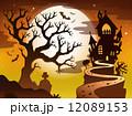 樹木 樹 ツリーのイラスト 12089153