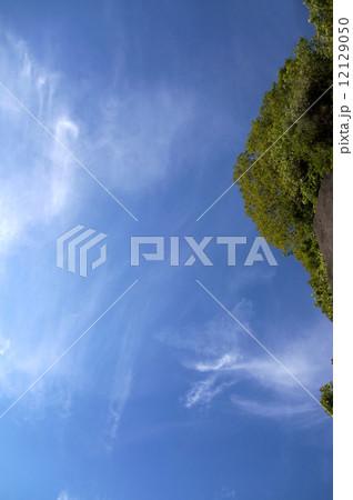 空と雲 12129050