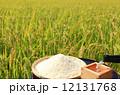 新酒 田んぼ 米の写真 12131768