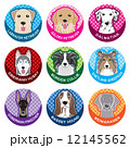 犬 / ネームプレート 12145562