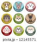犬 / ネームプレート 12145571