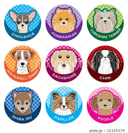 犬 / ネームプレート 12145574