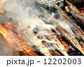 塩焼き 焼き魚 秋刀魚の写真 12202003
