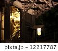 金剛力士像 吽形 ライトアップの写真 12217787