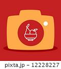 梨 洋梨 お皿のイラスト 12228227