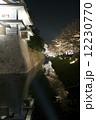 夜桜 金沢城 12230770