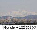 白山と桜 12230805