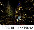 電飾 クリスマスツリー クリスマスの写真 12245042