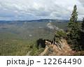 マリポサグローブ ヨセミテ国立公園 シエラネバダ山脈の写真 12264490