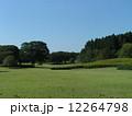 太陽の広場 昭和の森 初秋の写真 12264798