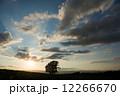 シルエット 夕焼雲 夕日の写真 12266670