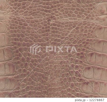 pink and brown crocodile leather texture 12278867