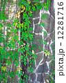 グレー 灰色 かべの写真 12281716