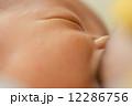 乳児 授乳 母乳の写真 12286756