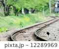 秩父鉄道 12289969