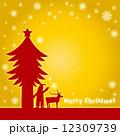 サンタクロース サンタ クリスマスイメージのイラスト 12309739